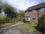 Thumbnail for sale in Butson Close, Newbury, Berkshire