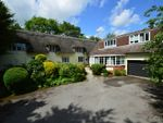 Thumbnail for sale in Great Yeldham, Halstead, Essex