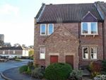 Thumbnail to rent in Williamson Drive, Ripon