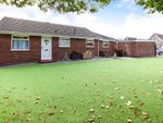 Thumbnail for sale in Woodland Rise, Bexhill-On-Sea