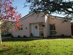 Thumbnail for sale in Marldon Grove, Marldon, Paignton