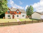 Thumbnail for sale in Winchester Hill, Romsey, Hampshire