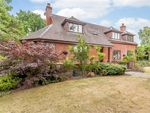Thumbnail to rent in Harmer Hill, Shrewsbury, Shropshire