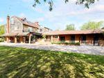 Thumbnail for sale in Streamside Cottages, Gibbs Lane, Oakhanger
