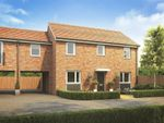 """Thumbnail to rent in """"Clayton Variant"""" at Plover Road, Stanway, Colchester"""