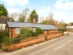 Thumbnail for sale in Thorley Street, Thorley, Bishop's Stortford, Hertfordshire