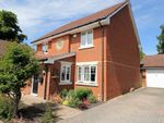 Thumbnail for sale in Inhams Road, Holybourne, Alton, Hampshire