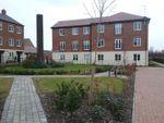 Thumbnail to rent in Sorbus Avenue, Hadley, Telford