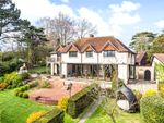Thumbnail for sale in Brighton Road, Woodmancote, Henfield, West Sussex
