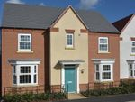 "Thumbnail to rent in ""Edwalton"" at Hollygate Lane, Cotgrave, Nottingham"