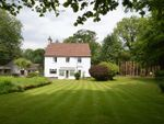 Thumbnail for sale in Liphook Road, Haslemere