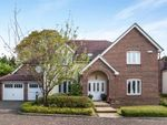 Thumbnail to rent in Hillthorpe Close, Purley, Surrey