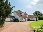 Thumbnail to rent in D'arcy Road, Tolleshunt Knights, Colchester