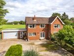 Thumbnail for sale in York Road, Escrick, York, North Yorkshire
