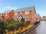 Thumbnail for sale in Lucius Crescent, Myland, Colchester