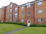 Thumbnail to rent in Canavan Park, Falkirk