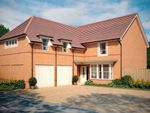 "Thumbnail to rent in ""Rothbury"" at Stanley Close, Corby"