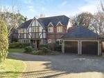 Thumbnail to rent in Middle Drive, Maresfield Park, Maresfield, Uckfield