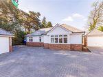 Thumbnail for sale in Pinehurst Road, West Moors