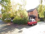 Thumbnail to rent in Beech Terrace, Preston, Lancashire