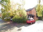 Thumbnail to rent in Beech Terrace, Preston, Lancashire