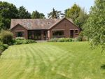 Thumbnail to rent in Park Hill, Gaddesby, Leicestershire
