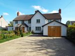 Thumbnail for sale in Hinwick Road, Podington, Bedfordshire