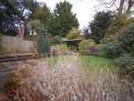 Thumbnail for sale in Spring Meadow, Uckfield, East Sussex