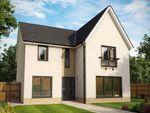 Thumbnail to rent in Plot 68, The Amethyst Garden Room, Fair Acres At Bowmont Terrace, Dunbar