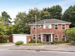 Thumbnail for sale in Beech Glen, Bracknell, Berkshire