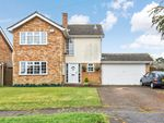 Thumbnail for sale in Elianore Road, Colchester, Essex