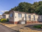 Thumbnail to rent in Fengate Mobile Home Park, Peterborough