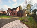 Thumbnail for sale in Bramblewood, Stalham, Norwich