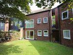 Thumbnail to rent in Northcott, Bracknell