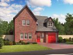 "Thumbnail to rent in ""Warwick"" at Bongate, Appleby-In-Westmorland"