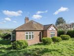 Thumbnail for sale in Chadwell Rise, Ware, Hertfordshire