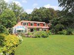 Thumbnail for sale in Wangfield Lane, Curdridge, Southampton