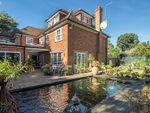 Thumbnail to rent in Edgecombe Close, Kingston-Upon-Thames