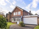 Thumbnail for sale in Hillside Road, Winchester