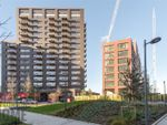 Thumbnail for sale in Albion House, City Island, London