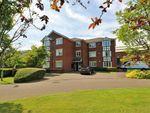 Thumbnail to rent in Kerr Place, Ashton-On-Ribble, Preston