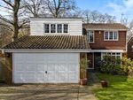 Thumbnail to rent in Kersey Drive, Selsdon, South Croydon