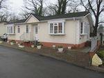 Thumbnail for sale in Badger Hill Park (Ref 5844), Knaresborough, North Yorkshire