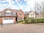 Thumbnail to rent in Holmoak Close, Purley