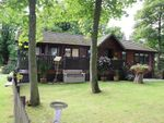 Thumbnail to rent in Pheasant Wood, Out Rawcliffe