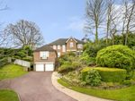 Thumbnail for sale in Birling Park Avenue, Tunbridge Wells, Kent
