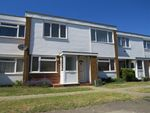 Thumbnail to rent in Tamar Rise, Chelmsford