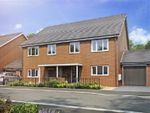 Thumbnail to rent in Perry Meadows, Tulip Close, Perry Common, Birmingham