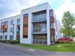 Thumbnail for sale in Hollies Court, Limes Park, Basingstoke