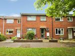 Thumbnail for sale in Lower Langley, Great Tey, Colchester